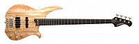 Washburn CB14SPK/with GB6