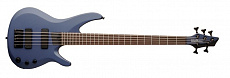 Washburn BB5DBLK W/GB6